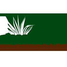 Paraisso Landscape